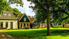 Hof mit Gras und alte Eiche und Kastanienbäume im historischen Dorf von Midden Beemster Stockbild