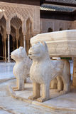 Hof van de Leeuwen stock afbeeldingen