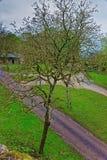 Hof an Vezelay-Abtei im Burgund Franche Comte in Frankreich Lizenzfreies Stockfoto