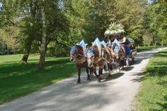 Hofbrau fracht z koniami Zdjęcie Royalty Free