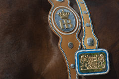 Hofbrau Oktoberfest Horse with Harness and Sign Stock Photo