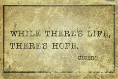 Hoffnung lebendiger Cicero lizenzfreies stockfoto