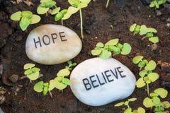 Hoffnung und Glaube an Wachstum Stockbilder