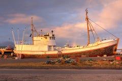 Hofn Island Royaltyfri Foto