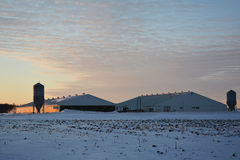 Hog Barns. With a snow covered field Stock Photography