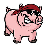 Hog wild. Cartoon illustration of a hog wild Royalty Free Stock Photos