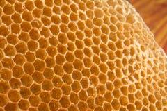 Hogar de la abeja del peine de la miel Foto de archivo