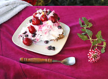 Hogar de la torta de Pavlova hecho 13 Fotos de archivo libres de regalías