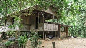 Hogar de madera de la selva Fotos de archivo libres de regalías