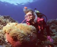 Hogar de Nemo Imagen de archivo