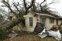 Hogar destruido por el árbol que cae fotografía de archivo