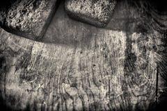 Hogar-hornada de las tortas en el tablero de madera Foto de archivo