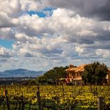 Hogar magnífico con los viñedos en el área de Livermore con las nubes y el cielo azul fotografía de archivo libre de regalías