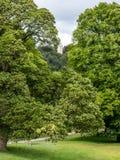 Hogar majestuoso Derbyshire, argumentos, puente, árboles, casa imagenes de archivo