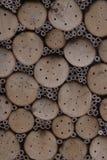 Hogar para las abejas solitarias Fotografía de archivo libre de regalías