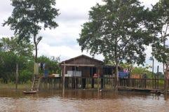 Hogar típico del Amazonas fotografía de archivo