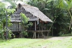 Hogar típico del Amazonas (Amazonia) imagen de archivo
