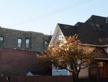 Hogar y árbol contra luz del sol poniente imágenes de archivo libres de regalías
