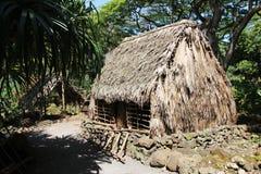Hogares hawaianos antiguos (casas polinesias) Fotos de archivo