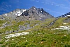 Hoge berg in Alpen Royalty-vrije Stock Foto's