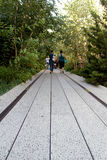 Hoge Lijn De Stad van New York Opgeheven voetpark Royalty-vrije Stock Afbeeldingen