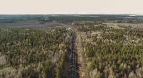 Hoge luchthommelmening van een spoorweg over de de lente bos Landelijke plaatsen stock foto