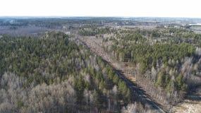 Hoge luchthommelmening van een spoorweg over de de lente bos Landelijke plaatsen stock foto's