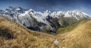 Hoge mountainesweide Royalty-vrije Stock Afbeeldingen