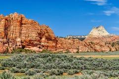 Hoge Pieken en Kegels van Zandsteen in Zion National Park royalty-vrije stock foto