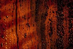 Hoge pijnbomen Stock Afbeeldingen