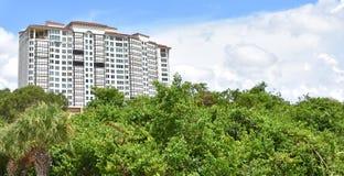 Hoge stijging van de Mangroven van Napels Florida stock afbeeldingen