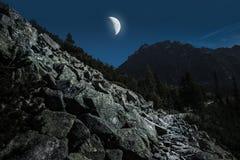 Hoge Tatra-Bergen van wandelingssleep i maanlicht Stock Foto's