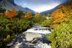 Hoge Tatras Royalty-vrije Stock Foto's