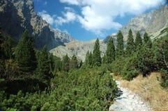 Hoge Tatras royalty-vrije stock afbeeldingen