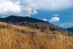 Hoge Tatras - open plek Royalty-vrije Stock Afbeeldingen