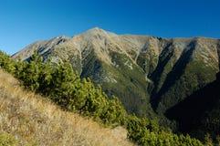 Hoge Tatras, Slowakije stock afbeeldingen