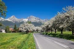 Hoge Tatras tijdens de lentetijd in Slowakije Royalty-vrije Stock Afbeelding