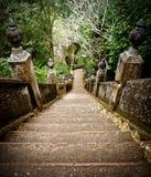 Hoge tempelsterren Royalty-vrije Stock Foto's