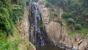 Hoge Watervalstromen op Bruine die Rotsen met Wildernisgroen worden omringd in Chiang Mai Region stock videobeelden