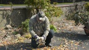 Hoger mannetje in tuin dragende het opruimen geharkte bladeren in kruiwagen stock video