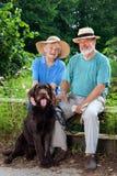 Hoger Paar bij de Tuin met hun Hondhuisdier stock fotografie