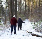 Hoger paar die met trekkingspolen in koud bos wandelen royalty-vrije stock afbeelding