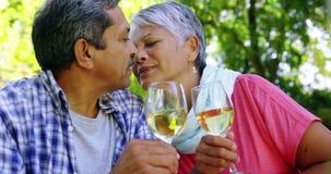 Hoger paar die terwijl het drinken van wijn kussen stock video