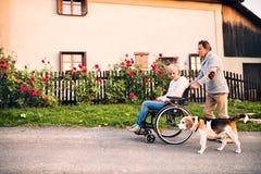Hoger paar met rolstoel op een gang met hond stock foto's