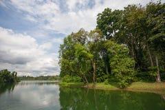 Hoger Seletar-Reservoir in Singapore Stock Afbeeldingen