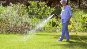 Hoger vrouw het water geven gazon door slang bij tuin stock video