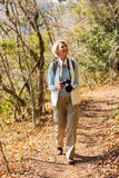 Hoger vrouw wandelingsbos Royalty-vrije Stock Foto