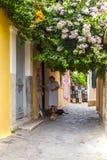 Hogere dame die de straatkatten in de smalle straten van Plaka-district in Athene voedt royalty-vrije stock foto