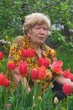 Hogere dame met tulpen Stock Foto