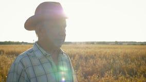 Hogere Kaukasische mens in een gang van de cowboyhoed op een gebied van tarwe bij zonsondergang dichte omhooggaand stock footage